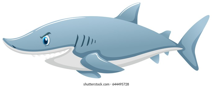 Wild shark on white background illustration