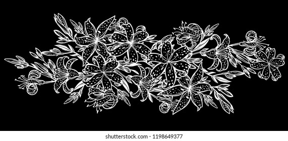 Wild sharp summer lilium flowers, field bouquet sketch in line art style. Elegant floral tiger lily blossom, romantic decoration. Botanical vector isolated illustration.