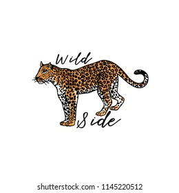 Wild side slogan. Leopard. Typography graphic print, fashion drawing for t-shirts. Vector stickers,print, patches vintage