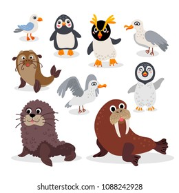 Wild South Pole animals set in flat style isolated on white background. Including walrus, Seal, penguin, seagull