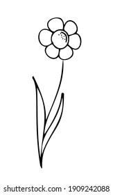 Wild Spring flower like chamomile, vector illustration. Simple cartoon line art. Hand drawn, minimalistic black flower on a white background. Isolated. Logo, emblem, sign, icon.