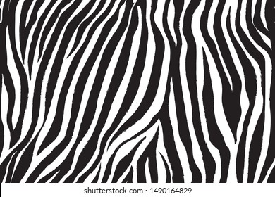 wild zebra wave pattern with black and white.