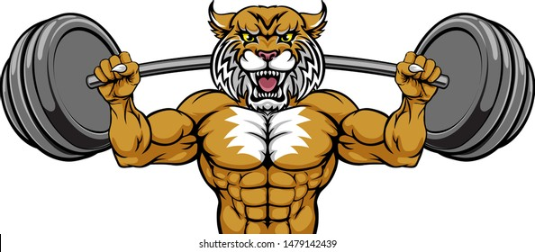 A wildcat animal body builder sports mascot weight lifting a barbell