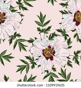 Wildflower peony flower  seamless pattern  isolated on nude background. Full name of the plant: peony. Wild flower for background, texture, wrapper pattern, frame or border,  invitation or textile.