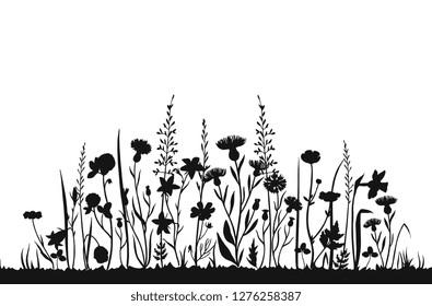Wildflower silhouettes. Wild grass spring field. Herbal summer vector background