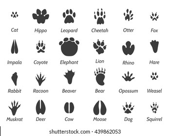 Wildlife Animals Black Footprints Set On White Background With Signs Vector Icons