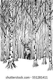 Wildlife carbon drawing. Deer in winter forest vector