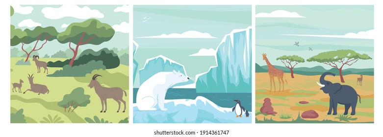 Wildlife design concept with set of compositions with wild animals in landscapes of various climate zones vector illustration