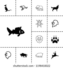 Wildlife icon. collection of 13 wildlife filled and outline icons such as lion, cangaroo, fish, buffalo, kangaroo, deer, wolf, paw. editable wildlife icons for web and mobile.