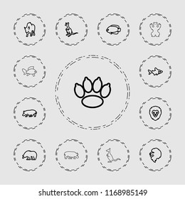 Wildlife icon. collection of 13 wildlife outline icons such as lion, bear, fish, cangaroo, buffalo, hippopotamus, paw. editable wildlife icons for web and mobile.