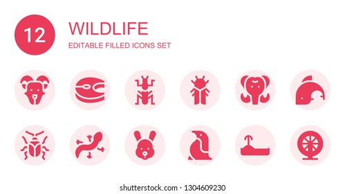wildlife icon set. Collection of 12 filled wildlife icons included Goat, Salmon, Mantis, Cicada, Mammoth, Beetle, Lizard, Rabbit, Penguin, Turtle, Dolphin, Hamster