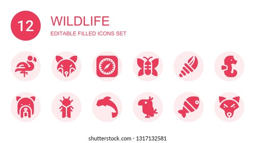 wildlife icon set. Collection of 12 filled wildlife icons included Flamingo, Fox, Safari, Butterfly, Seashell, Dog, Cicada, Dolphin, Parrot, Fish, Seahorse, Wolf