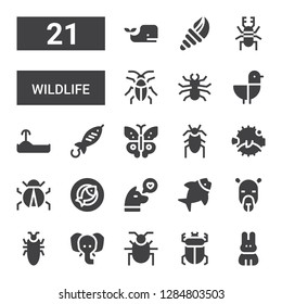wildlife icon set. Collection of 21 filled wildlife icons included Rabbit, Beetle, Elephant, Cockroach, Camel, Fish, Dog, Ladybug, Blowfish, Butterfly, Turtle, Seagull, Seashell