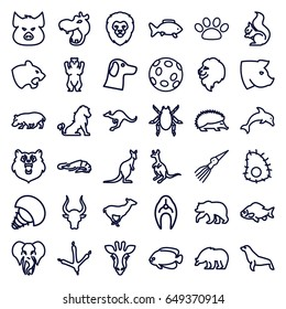 Wildlife icons set. set of 36 wildlife outline icons such as bear, giraffe, lion, hippopotamus, pig, alligator, hedgehog, beetle, panther, fish, footprint of  icobird