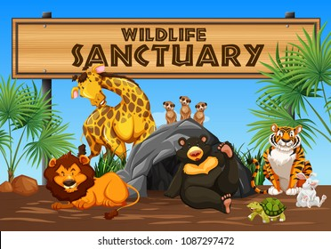 Wildlife Sanctuary Banner and Animals illustration