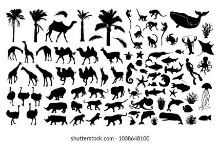 Wildlife vector silhouettes