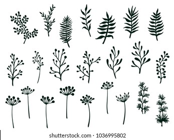 Willow and palm tree branches, fern twigs, lichen moss, mistletoe and other grass herbs, dandelion flower vector illustrations set. Hand drawn branches, black twigs floral collection isolated on white