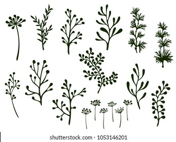 Willow and palm tree branches, fern twigs, lichen moss, mistletoe, savory grass herbs, dandelion flower vector illustrations set. Hand drawn branches, twigs floral collection isolated on white.