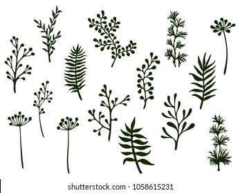 Willow and palm tree branches, fern twigs, lichen moss, mistletoe and fennel grass herbs, dandelion flower vector illustrations set. Hand drawn branches, twigs floral collection isolated on white.