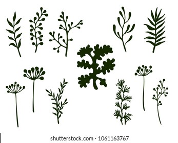 Willow and palm tree branches, fern twigs, lichen moss, mistletoe, rosemary grass herbs, dandelion flower vector illustrations set. Simple branches, twigs floral collection isolated on white.