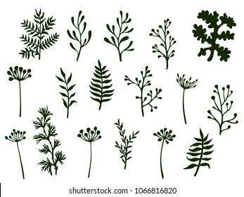 Willow and palm tree branches, fern twigs, lichen moss, mistletoe and sage grass herbs, dandelion flower vector illustrations set. Hand drawn branches, twigs floral collection isolated on white.