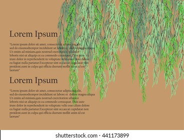willow tree branch for frame background. green leave weeping tree on brown  background with text