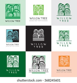 Willow tree with branches. Vector illustrations.   Symbol of tree - set of simple elegance signs.