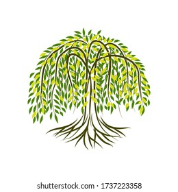 Willow Tree Landscape With circle shape Vector Nature