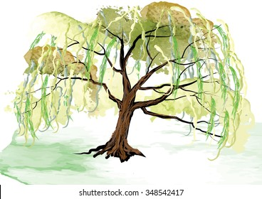 Willow tree on the ground landscape design,watercolor look created with brush,vector illustration