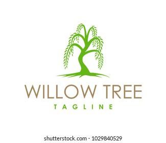 Willow Tree Symbol Logo Vector