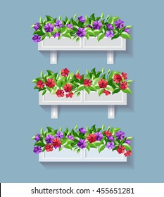 Window box flower. Red and Purple Petunia vector illustration.
