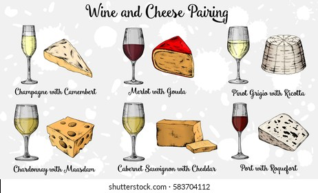 Wine and Cheese pairing vector illustration vintage sketch style