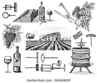 wine harvest products, press, grapes, vineyards corkscrews glasses bottles in vintage style, engraved hand drawn sketch..