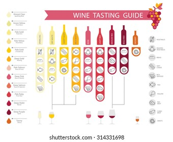 Wine infographics with food pairing, bottle and glass type, wine types and colors.