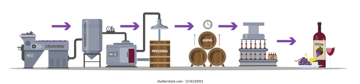 Wine production process. Fermentation, distillation, pressing, aging and bottling alcohol drink. Wooden barrel with wine. Isolated vector flat illustration