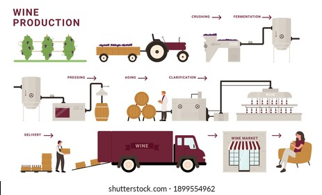 Wine production process stages infographic vector illustration. Cartoon modern winery factory line processing grapes, crushing, fermentation and aging, delivery to customer tasting alcohol beverage