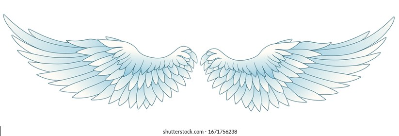 Wing cartoon drawing graphic vector
