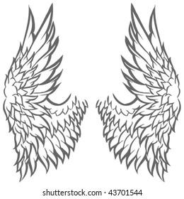 Wing Illustration