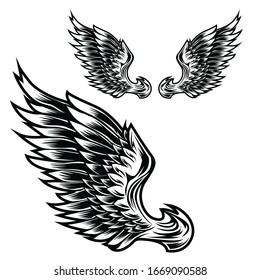 Wings Bird feather Black & White Tattoo Vector 9