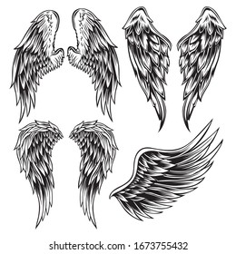 Wings Bird feather Black & White Tattoo Vector Set 13
