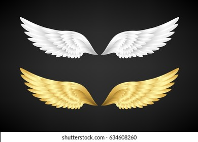 Wings collection. White and gold color variants. Vector illustration.