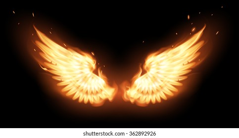 Wings in flame