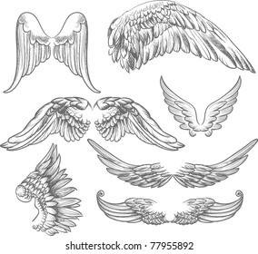wings label collection