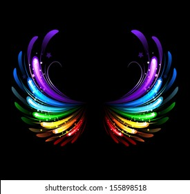 Wings, painted with colorful sparkles on black background.