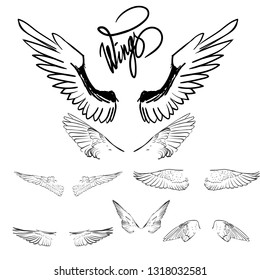 wings set vector ogo