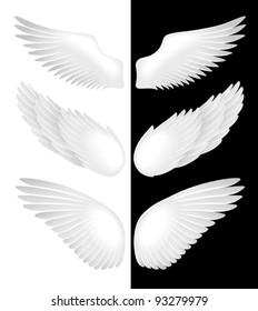 Wings. Vector illustration