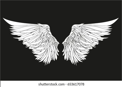 Wings. Vector illustration on black background. Black and white style
