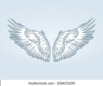 Wings. Vector illustration on a blue background.