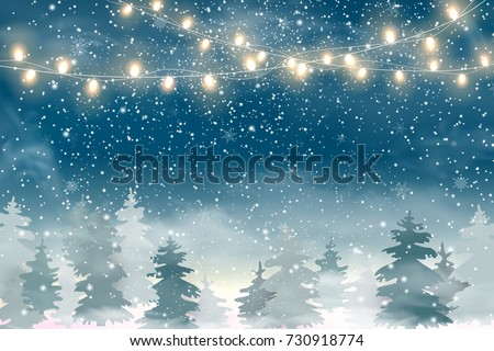 Winter Christmas Woodland Landscape Falling Snow Stock ...