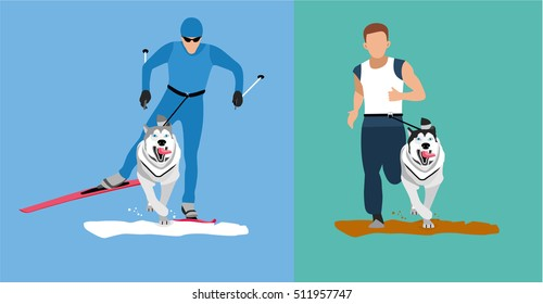 Winter cross country skiing with a dog and a summer running competition with the dog-husky. Flat cartoon illustration. Sport banner. Dog sticking his tongue runs ahead of the man. Skijoring, canicross